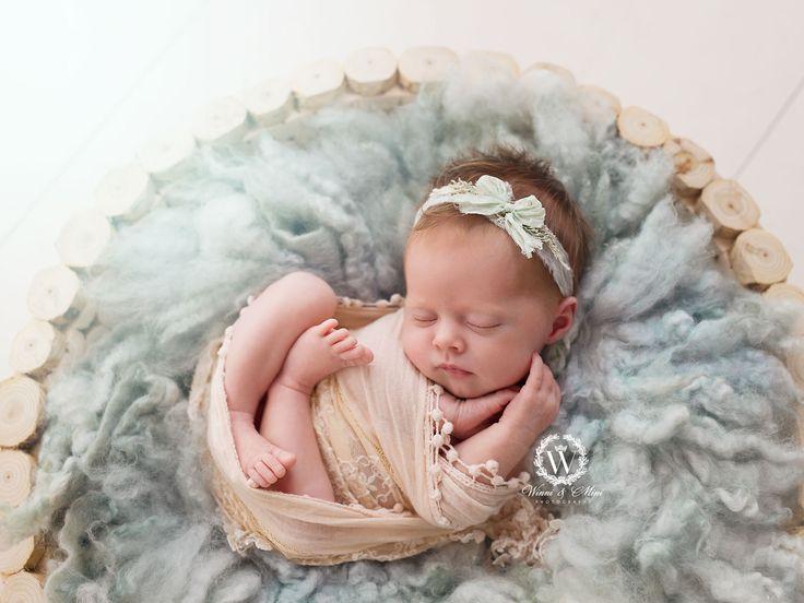 Description newborn photographer photography gold coast