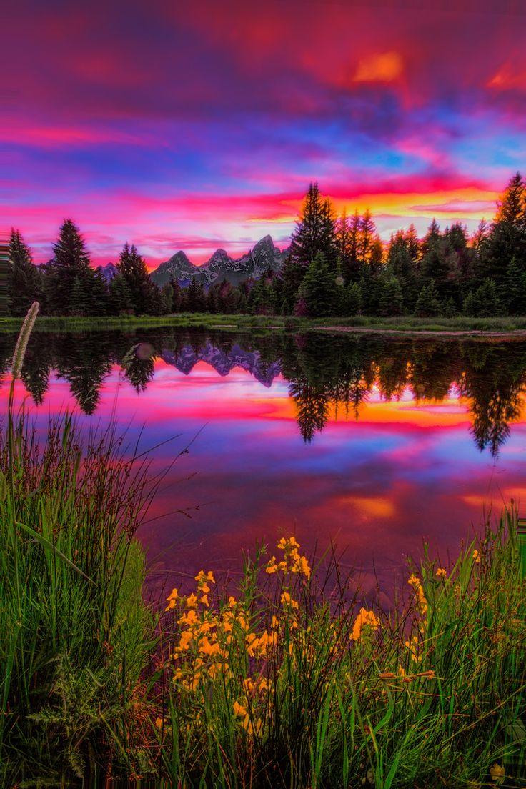 Beautiful Landscape photography : Jackson Hole, WY Beaver ...