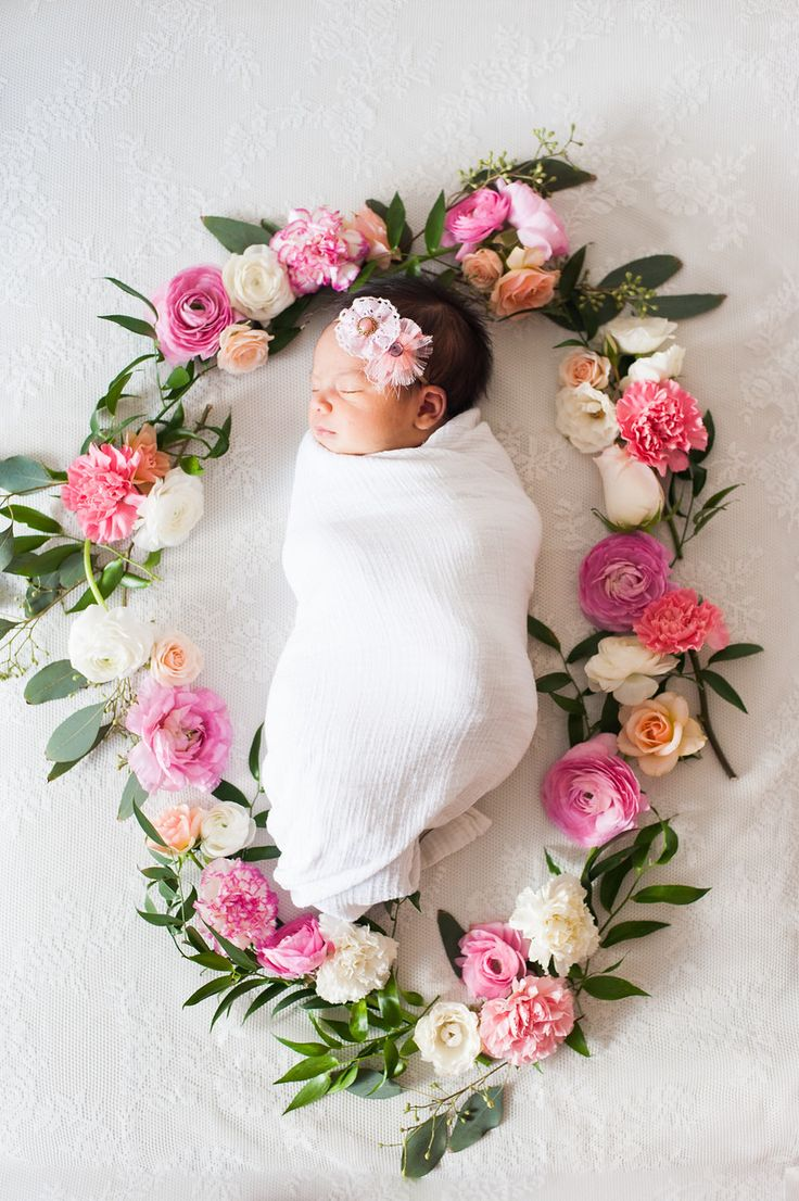 Description candice benjamin photography newborn session baby in flower